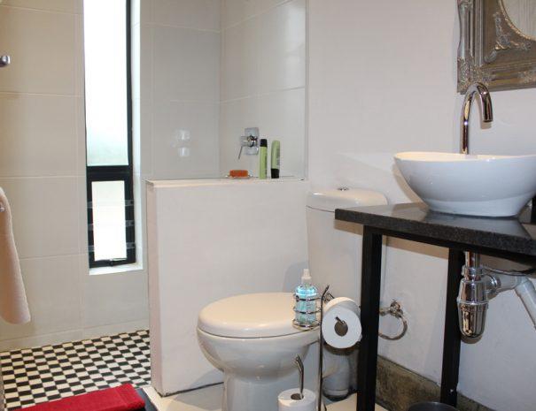 Greyling-Bathroom