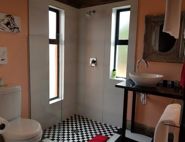 Louw-Bathroom